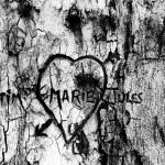 arbre-001-web